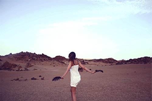 Home Comforts LAMINATED POSTER Beach Desert Dress Desert Pos