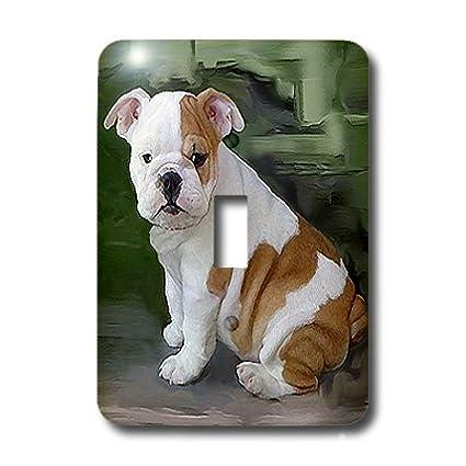 Home Improvement Wall Plates 3dRose lsp_4116_1 British Bulldog Puppy