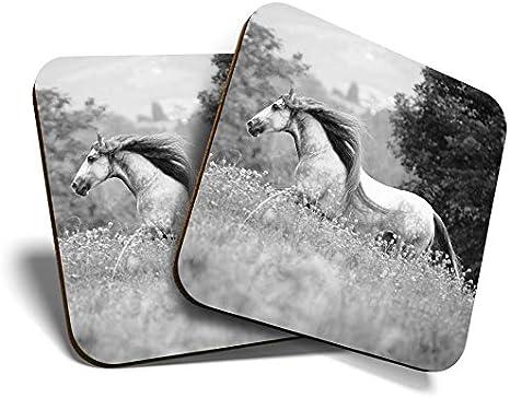 Great Coasters - Posavasos (2 unidades, cuadrados, diseño de caballos españoles, estilo andaluz, calidad brillante, para cualquier tipo de mesa #35233