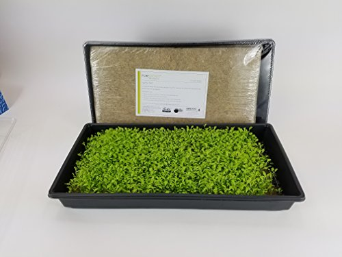 Puregrown Hemp Organic Micro Greens Kit  Omri Listed  Felt Pads For Growing Microgreens  Pack Of 6 Plus Trays And Dome