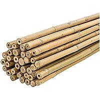 PLANTAWA Tutores de Bambú, Tutores de Bambú Ø 6-8 mm, Paquete 25 Unidades, Uso Agrícola para Sujetar Plantas, Hortalizas…