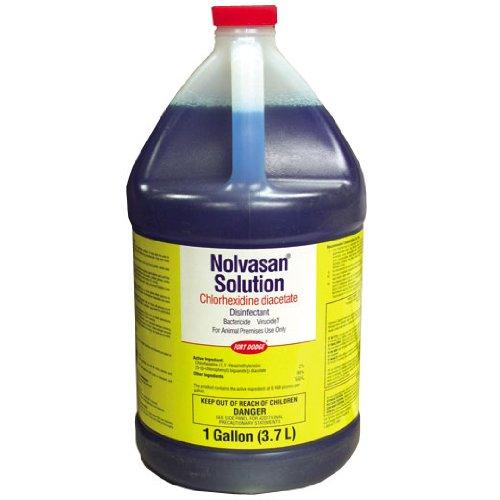 Zoetis Nolvasan Disinfectant Solution, 1 Gallon