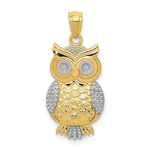 14k Yellow Gold Textured Owl Pendant Charm Necklace Bird Fine Jewelry For Women Gift Set (Yellow Cat Gold Charm)