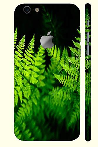 Wallpaper Wiki Fern Leaves Skin For Apple Iphone 8 Amazon