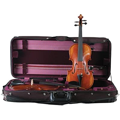 guardian-cv-032-double-violin-case
