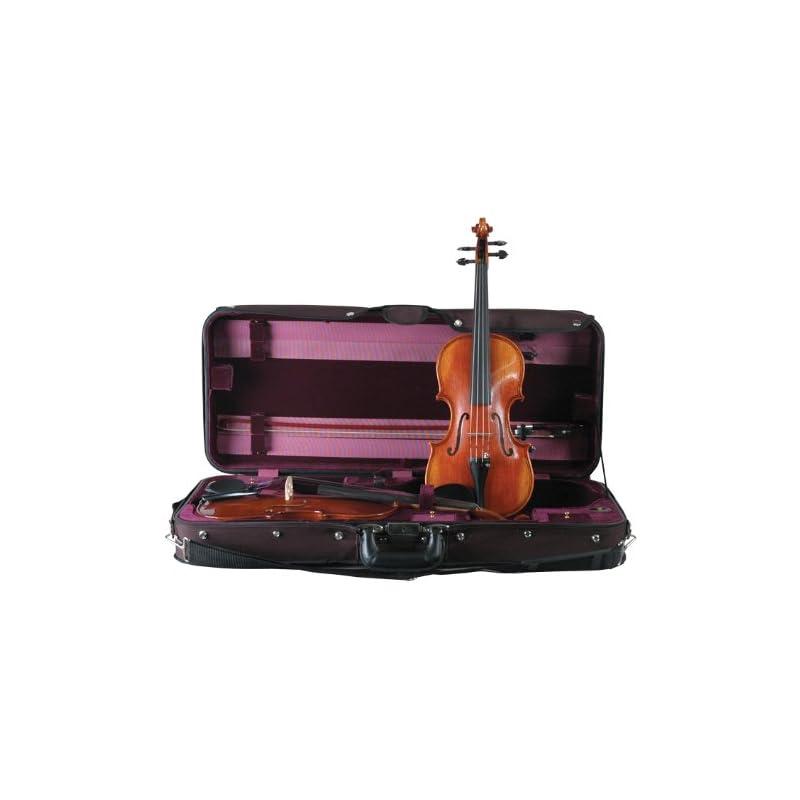 guardian-cv-032-double-violin-case