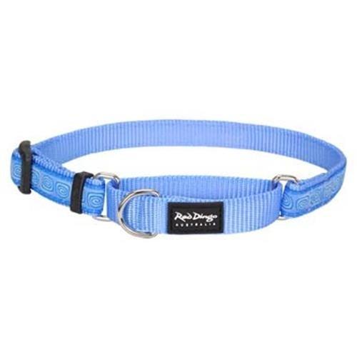 Red Dingo Hypno Blue Medium Martingale Collar