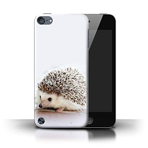 eSwish Phone Case/Cover for Apple iPod Touch 5 / Tiny Hedgehog Hoglet Design/Cute Baby Animal Photos Collection