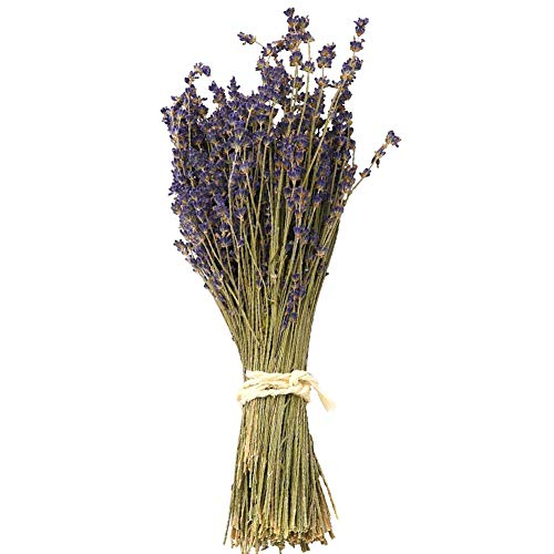 WGIA Natural Dried Lavender Bundles - Freshly Harvested Lavender Bunch Royal Velvet Decorative Flowers Bouquet for Wedding DIY Home Party 1 Bundle Pack