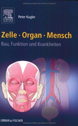 Zelle Organ Mensch: Bau, Funktion und Krankheiten