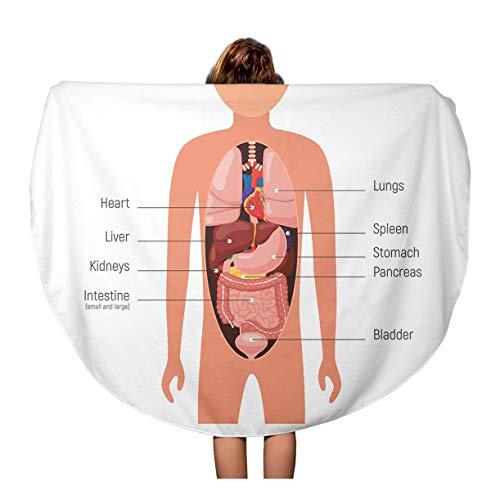 Semtomn 60 Inches Round Beach Towel Blanket Brain Diagram Internal Organs Anatomy of Human Body Travel Circle Circular Towels Mat Tapestry Beach Throw