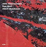 While We're Young by John Abercrombie (1993-01-26)