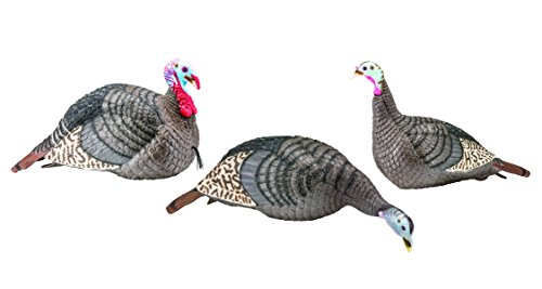 - Hunters Specialties 100006 Strut-Lite Flock Decoy, 3-Pack