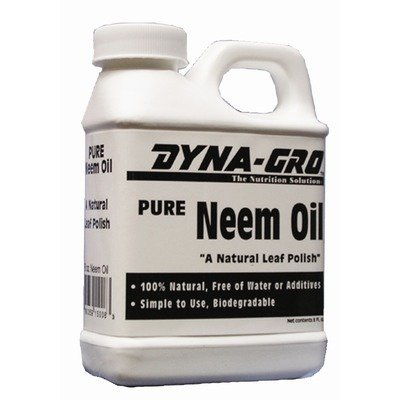 Dyna-Gro Pure Neem Oil Natural Leaf Polish 8 Ounces