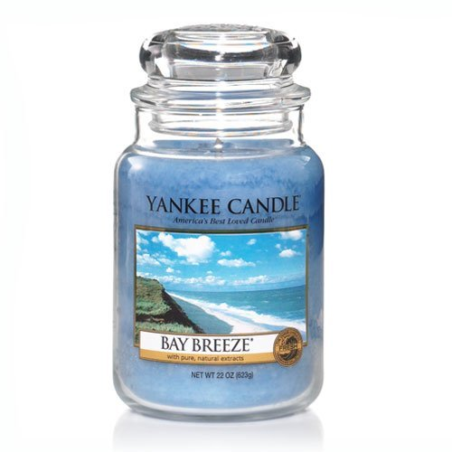 Yankee Candle Bay Breeze Large Jar Candle 22 oz ()