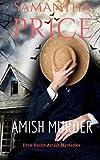 Amish Murder (Ettie Smith Amish Mysteries) (Volume 2)