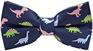 Carahere Little Boy's Handmade Pre-Tied Patterned Bow Ties For