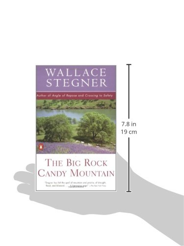 The Big Rock Candy Mountain (Contemporary American Fiction): Wallace ...