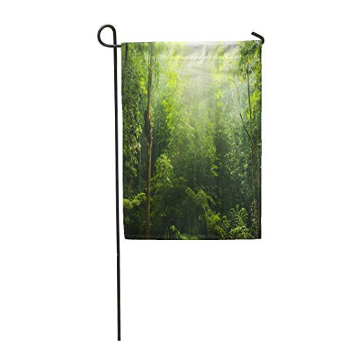 Semtomn Garden Flag 12x18 Inches Print On Two Side Polyester Jungle Green Forest Ray of Light Rainforest Rain Tree Tropical Home Yard Farm Fade Resistant Outdoor House Decor Flag -