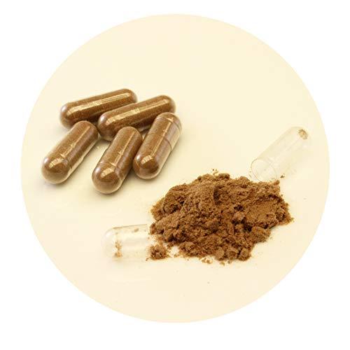 3 Bottles of Umi No Shizuku Fucoidan Capsule Pure Seaweed Extract Enhanced with Agaricus Mushroom Optimized Immune Support Health Supplement