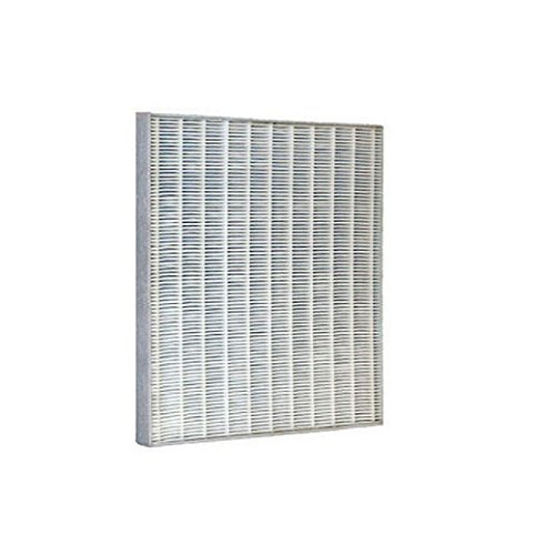 Newport 9000 Replacement Hepa/charcoal Filter by Newport