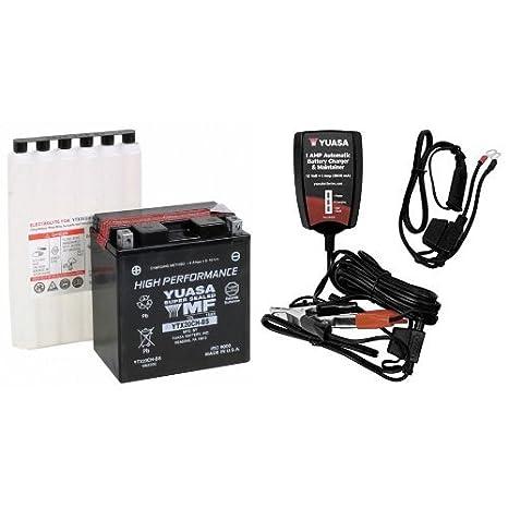 Amazon.com: Yuasa YUAM6220C YTX20CH-BS - Batería, batería ...