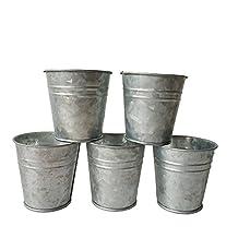 10PCS/Lot D7XH7CM Small Nursery Pots Round Mini Meat Plant Pot Metal Flower Plnter Pots For Garden