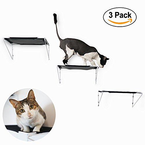 RayCC Cat Shelves Cat Steps Cat Perch Cat Cloud Cat Bed Wall-Mounted Cat Furniture Great for Cat Climbing(Set of 3,Large) by RayCC