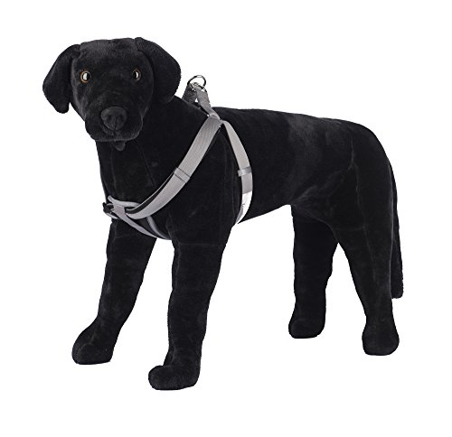 Pet Champion Comfort Chest Pad Cushion No Pull Step-In Easy Lead Dog Harness, Assorted Colors, Medium 5/8in x 14-20in Cushion Pull