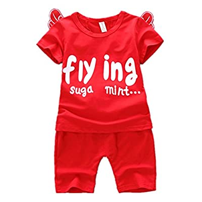 JIEYA Baby Boys' Cotton Summer Outfit Set 3D Wing Top + Solid Cropped Pants
