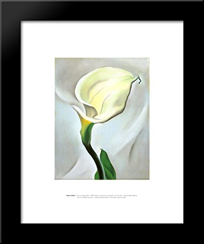 Georgia Okeeffe Calla Lily - Calla Lily Turned Away 20x24 Framed Art Print by O'Keeffe, Georgia