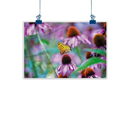 (Warm Family Modern Oil Paintings Garden Butterfly on Coneflowers Canvas Wall Art 28