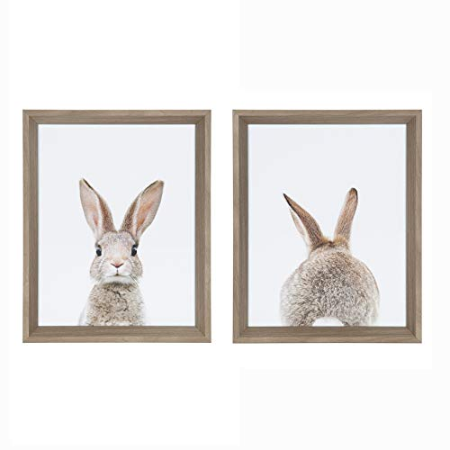 - Kate and Laurel Calter Bunny Animal Prints Photo Portraits Framed Print Under Glass Art Set by Amy Peterson, 12.25x15.25 Each, Set of 2, Gray