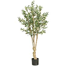 Nearly Natural 5258 Olive Silk Tree, 5-Feet, Green