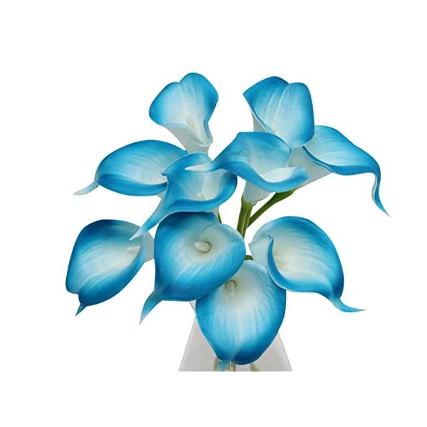 Angel Isabella, LLC 20pc Set of Keepsake Artificial Real Touch Calla Lily with Small Bloom Perfect for Making Bouquet, Boutonniere,Corsage (Turquoise Malibu Blue Trim)