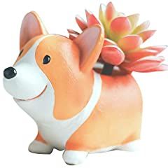 ❤️=^_^= Hi, Dear Friend, Welcome to Jonerytime. =^_^=❤️ ❤️Features:❤️❤️Cute Sleeping Corgi Dog and Husky Dog Shaped Cartoon Animal Succulent Vase Flower Cactus Planter Pot ❤️With a drainage hole on the bottom of the vase,which makes the plant...