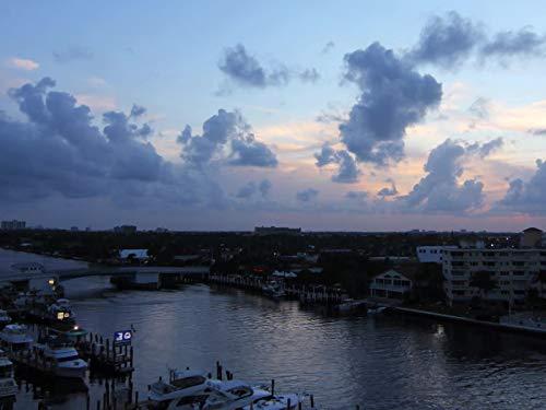 Bay Boca (Flying High Out of Boca Raton)