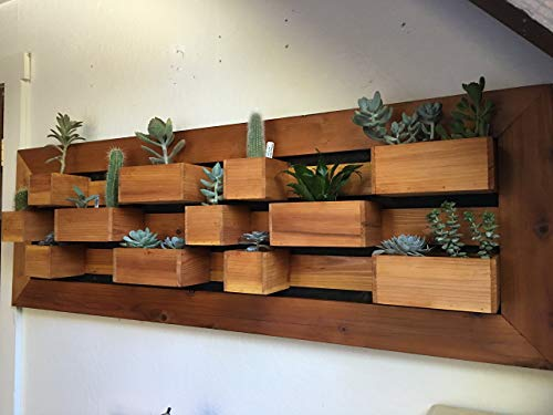 Free Shipping, In Stock, Modern Succulent Wall Planter, Living Wall Planter, Garden Wall Art, Succulent Garden, Wall Garden, Succulent Planter Box.