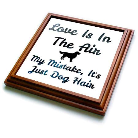 3dRose Carrie Merchant 3drose- image quote - Image Of Love Is In The Air My Mistake Its Just Dog Hair - 8x8 Trivet with 6x6 ceramic tile (trv_317463_1)