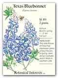 Texas Bluebonnet Seeds