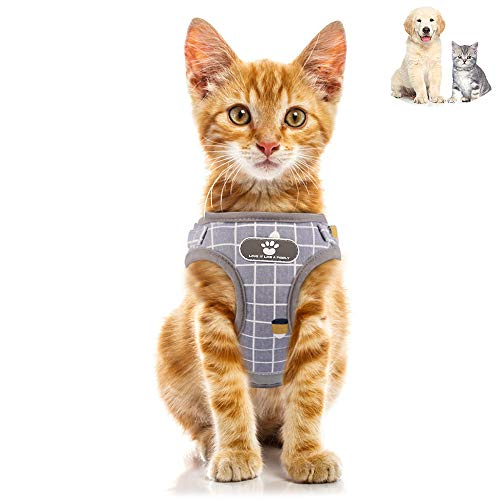 Amidaky Dog and Cat Universal Harness with Leash Set Escape Proof Cat Harnesses Adjustable Reflective Soft Mesh Pet Vest (S, Grey)