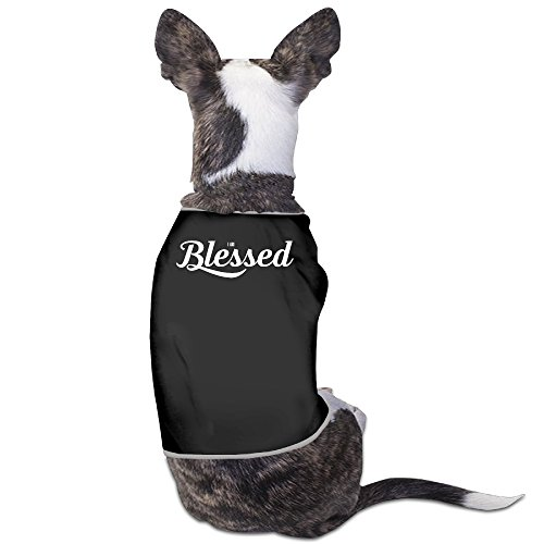 cute-i-am-blessed-happy-life-cat-dress-pet-clothes-dog-shirt