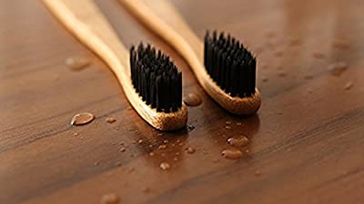 Eco-Friendly Bamboo Toothbrush with Charcoal Bristles 2 pc Set
