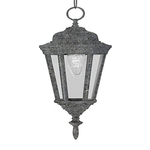 (Transglobe Lighting 4097 SWI Outdoor Hanging Pendant with Clear Glass Shade, Swedish Iron)