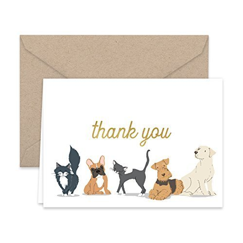 Paper Frenzy Dog and Cat Thank You Note Cards and Kraft Envelopes -- 25 pack (Thank You Card From Dog)