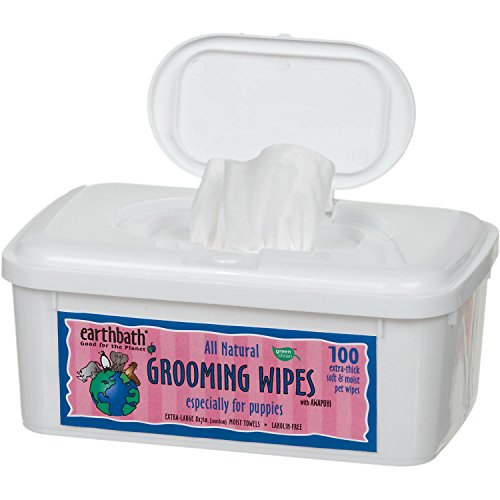 Earthbath PB6S All Natural Puppy Grooming Wipes, 100 (Natural Puppy Grooming Wipes)