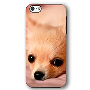 Chihuahua Dog Puppy iPhone 5 and iPhone 5s Armor Phone Case