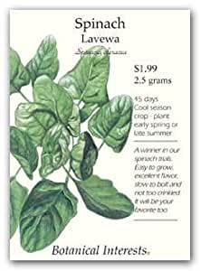 Botanical Interests 0207 Spinach Lavewa Seed Packet