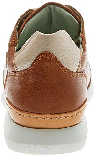 brandy Marron Modena Femme Pikolinos Sneakers W0r Basses 4fZWHYq