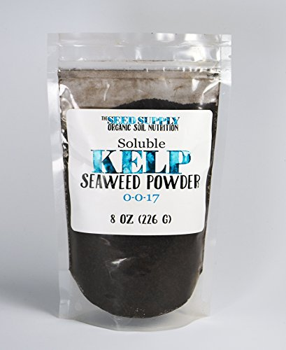 soluble-kelp-seaweed-powder-8-ounces-for-plant-root-development-and-growth-stimulant-0-0-17-organic-